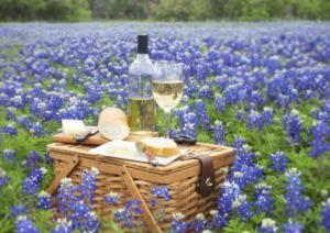 blue bonnets and wine